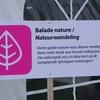 balade nature evenement - Copie.jpg
